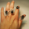 Thumbnail image for Fly Ring is Ugly, At Best