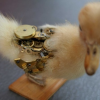 Thumbnail image for Steampunk/Borg Taxidermy Is… Um… Unique