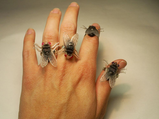 Post image for Fly Ring is Ugly, At Best