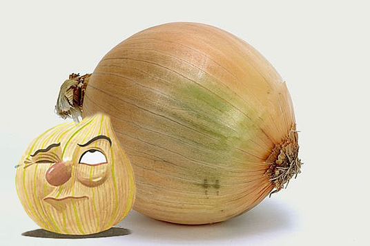 Onion Lovers
