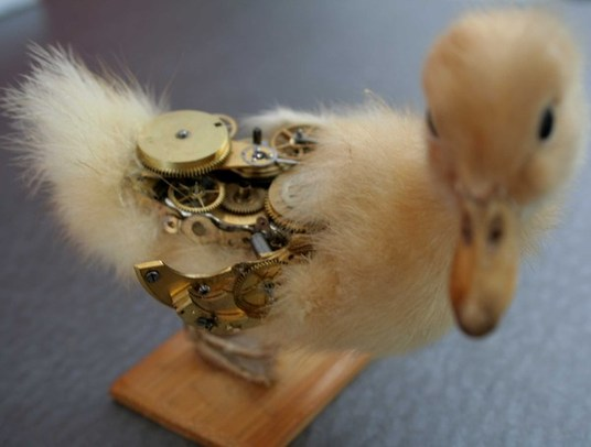 cute steampunk taxidermy